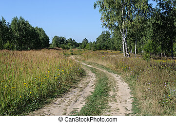 Country dirt road in forest glade