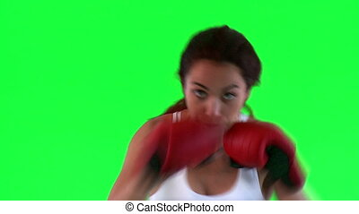 Athletic woman practicing boxe over green background