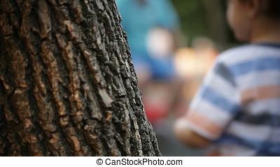 Horizontal Pan from Bark Tree to Blurred Playground