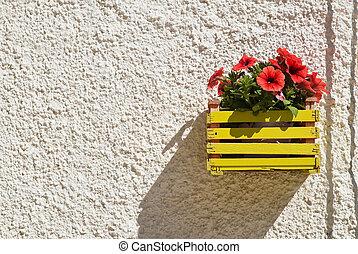 Flowerpot. Polignano a mare. Puglia. Italy.