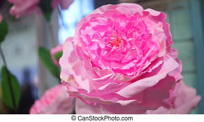 Flowers pink spring - bouquet of pink roses Bride and...