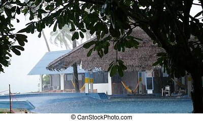 a tropical downpour with the wind at day - a tropical...