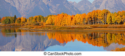 Autumn landscape - Reflection of colorful Aspen trees in...