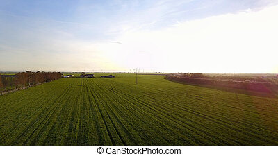 Beautiful sunset landscape of agriculture fields - Aerial...