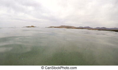 Over and under water in tropical sea
