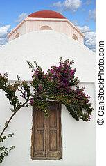 Wooden church door with bougainvillea flower