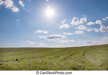 sunburst over grassy field - The sun shines over a grassy...