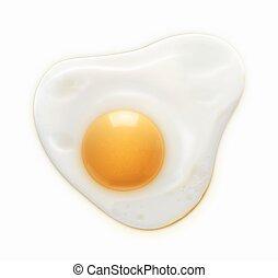 Fried egg - Vector illustration of fried egg isolated on...