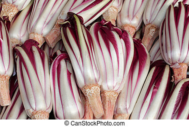 Background of red radicchio havested in the Po Valley in...