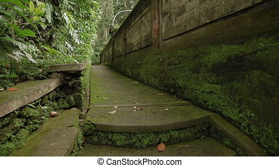 Mossy walls and sculptures in Monkey forest. Ubud, Bali,...