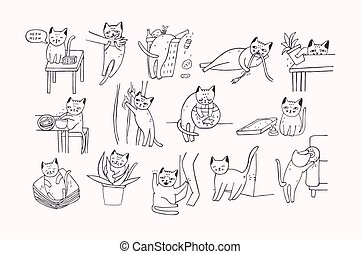 Set of problem with cat behavior. Kitten meowing, bites,...