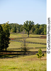 Pasture Fence
