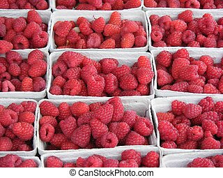 boxed raspberries - Photo of lots of boxed Raspberries