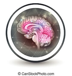 Brain round shape icon, abstract transparent shapes and wave...