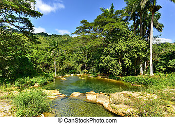 El Nicho Waterfalls in Cuba. El Nicho is located inside the...