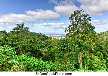 Tropical Landscape - Cienfuegos, Cuba - Tropical panoramic...