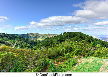 Tropical Landscape - Cienfuegos, Cuba - Tropical panoramic...