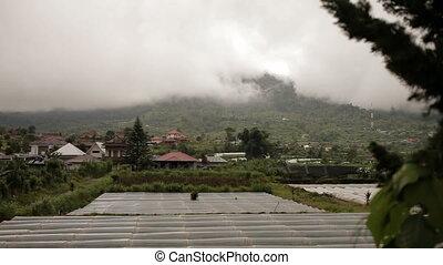 Strawberry field near Batur volcano Kintamani. Winter rainy...