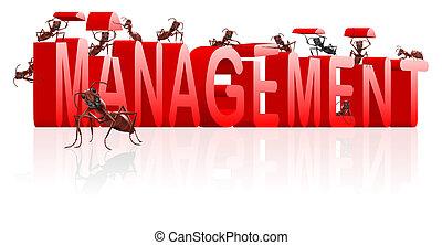 management manage organisation organise