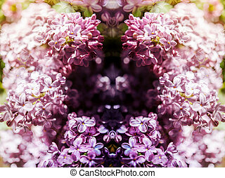 Extreme close-up of lilac syringa flower - Abstract...