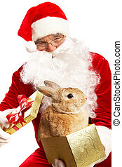 Santa with cute pet - Photo of happy Santa Claus holding...
