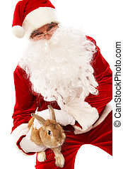 Surprise - Photo of happy Santa Claus holding fluffy rabbit