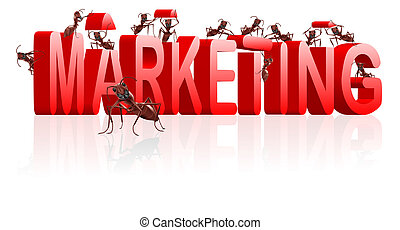 marketing or building market strategy - marketing or market...