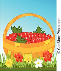 Basket with berry - Full basket of the red berry on glade...