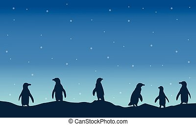 Penguin silhouette at night scenery