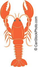 lobster - vector illustration of a lobster on isolated...