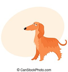Cute long haired Afghan hound dog character, cartoon vector illustration