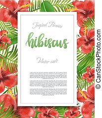 Summer flyer design with tropical plants and hibiscus flowers