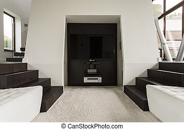 TV area of a house