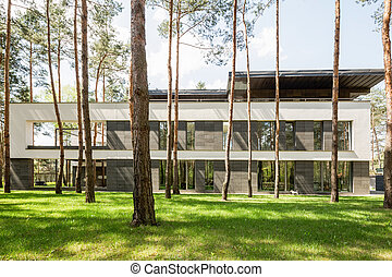 Modern house exterior in the forest