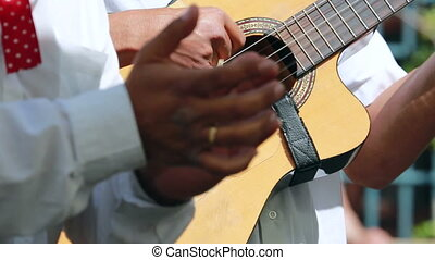 Spanish Classical Flamenco Guitar. Closeup Of A Guitarist...