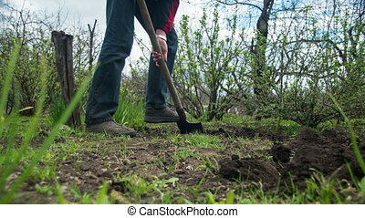 Young Man Gardener Digs the Ground with a Shovel in the Garden. Time Lapse