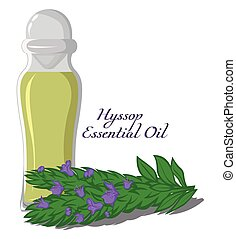 Essential oil of Hyssop - Bottle with essential oil of...