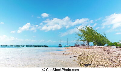 Look at Coral Island - Tranquil look at beach with small...