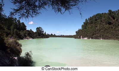 Geysers water hot springs on background of forest in New...
