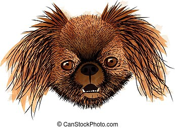 Front portrait of a brown dog in vector shapes