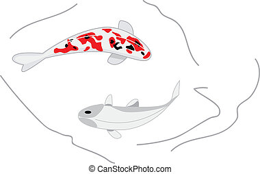 two vector koi carps