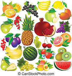 Fruits. - Fruits on a white background. Vector...
