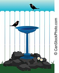 Backyard Bird Bath - Two birds are enjoying a bird bath
