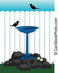 Backyard Bird Bath - Two birds are enjoying a bird bath