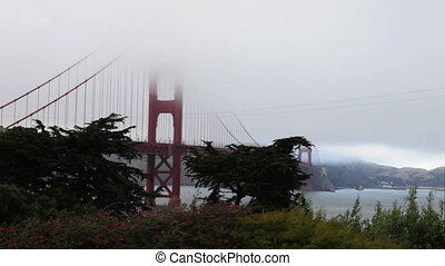 Golden Gate Bridge with green grass as foreground from south...