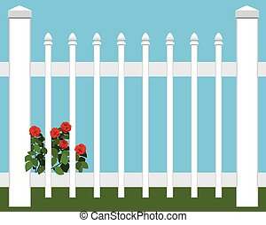 Flowers in Fence - Flowers are growing close to picket fence