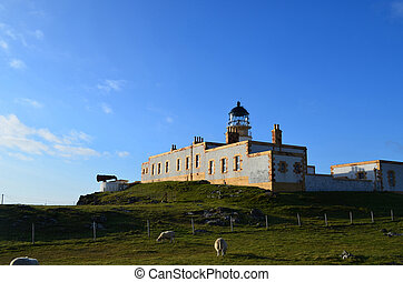 Sheep Grazing By Neist Point Lighthouse on Skye Scotland -...