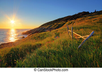 Sunrise by the Ocean - Newfoundland coastline at sunrise.