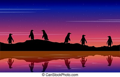 Illustration beauty scenery with penguin silhouette