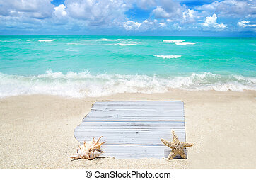 White wood board with seashell and starfish on the sandy...